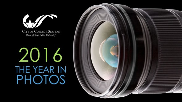 2016 Year in Photos