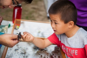 A young resident got an up-close look at nature at the Lick Creek Park Nature Center grand opening.