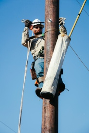 CSUs Jacob Rowe dominated the Annual Apprentice Lineman Rodeo in October at Veterans Park and Athletic Complex. He won three of the five events in a spirited competition against BTU.