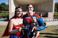 Dog owners had as much fun as their pets at the annual Weiner Fest at the Wolf Pen Creek Amphitheater.